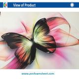 folha plástica do PVC do perfil do PVC do PVC de 5mm