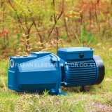 Self-Priming горячая продажа чистой воды серии Pump-Jng