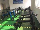 Sunport Scrooser электрический скутер два места для использования вне помещений туристский электрического скутера мобильности с тент