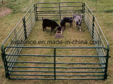 農場の塀: 容易にアセンブルされた携帯用Foldable上塗を施してある馬または牛またはヒツジまたは牛ヤードのパネル