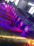 19*15W RGBW LEDのズームレンズの同価の段階の照明