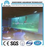 Prix matériel acrylique de projet de mur de guichet d'aquariums