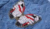 Las mariposas azules del cordón bordaron la alineada de la muchacha de la manera