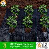 Agricultura Usar Controle de plantas daninhas em tecido de polipropileno tecido Paisagem