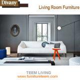 Divanyの生きている家具排他的なデザイナーソファーを満たしなさい