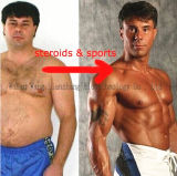 Acetato gordo ardiente /Methyltrienolone 965-93-5 del 99% Metribolone para el músculo de adquisición
