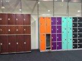 3つのドアが付いている体操のロッカー