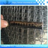 Vetex ha galvanizzato la rete metallica di collegamento Chain