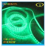 Lumière de bande cotée de RoHS 220V IP65 DEL de la CE avec du temps de longue vie