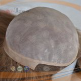 Toupee pieno di perimetro dell'unità di elaborazione del merletto dei capelli del Virgin mono (pppg-l-0787)