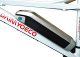 Cadre en alliage d'aluminium / Batterie au lithium / Vélo électrique / Motocyclette / Vélo E-Bike / Dual Purpose