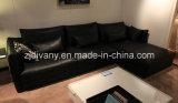Sofà domestico moderno del tessuto della mobilia (D-74-E+B+D)