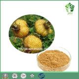 Extracto natural del 100% Rosa Roxburghii, polvo del jugo de Rosa Roxburghii, polvo de Cili