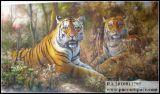 Pinturas de animais - Tiger pinturas (A-01)
