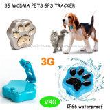 3G GPS van WCDMA het Volgen voor Huisdier met Waterdichte IP66 (V40)