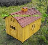 Chambre de chien (QZD8060)