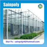 Самые популярные из стекла, растительных парниковых