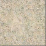 De Tegels van de Vloer van de keramiek en van het Porselein (ALQ4501)
