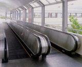 Bewegend lopen / Auto lopen / Travelator / Passenger Tranveyor