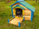 Chambre de chien (QZD0902)