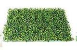 40*60cm Boxwood Grass artificiale per decorazione