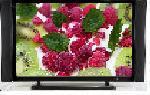 TV de plasma(PS-50PE)
