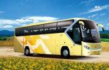 Autobus de LCZonda, pièces d'autobus et bras de moniteur d'AccessoriesD (LCD505)