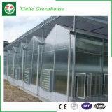 Agricultura PC comercial de policarbonato Estufa com sistema hidrop ico