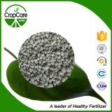 Granit soluble dans l'eau à haute teneur en eau Bb NPK 19-19-19 Engrais
