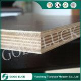 madera contrachapada de la construcción de la junta del dedo de 18m m