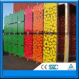 4-19mm freies/farbiges ausgeglichenes lamelliertes niedriges e-isolierendes Glas
