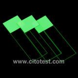 Colorcoat TM 현미경 활주 (0317-6101-02)