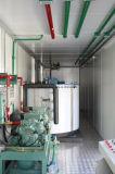 Macchine di fabbricazione di ghiaccio del fiocco/creatori messi in contenitori 20 tonnellate/pianta con trasporto facile di disegno compatto