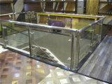 Scala del metallo con le parentesi del corrimano dell'acciaio inossidabile ed il supporto durevole