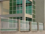 Acier résidentiel simple blanc de jardin clôturant 18-1