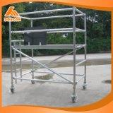 Qualitäts-doppeltes Breiten-Aufstiegs-Strichleiter-Baugerüst (SDW-01)