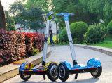 1000Wの10inch TTの電気スクーター