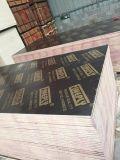 China Venta caliente negro/rojo/marrón Film enfrenta la madera contrachapada