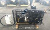 30bar Compressor van de Lucht van de Zuiger van de Hoge druk van het Stadium van /40bar de Dubbele