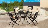 /Rattan extérieur/présidence et Tableau de rotin de meubles hôtel de jardin/patio mis (HS1260C&HS6210DT)