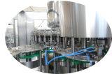 Trinkenden Tafelwaßer-füllenden Verpackungs-Selbstproduktionszweig beenden