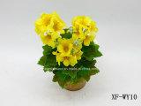 Géranium artificiel/en plastique/en soie Bush (XF-WY10) de fleur