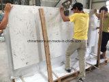 Сляб Ariston белый мраморный для плитки и Countertop