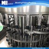 Pequeña máquina de rellenar de proceso completa del agua mineral de la botella