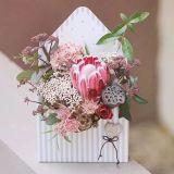 Пользовательское поле бумаги в сложенном виде/картона отображения цветов в салоне