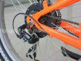 cruzador para a venda, bicicleta elétrica barata da praia da bateria de lítio 48V