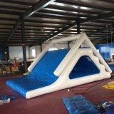 Juguete inflable del agua del encerado del PVC (castillo de salto)