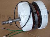 низкоскоростной генератор постоянного магнита 300W одновременный