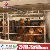 Ganadería la malla de alambre de jaulas en batería para las aves de corral pollo de la capa de la granja