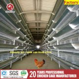 換気の冷却ファンが付いているアルジェリアの養鶏場電池ケージ
